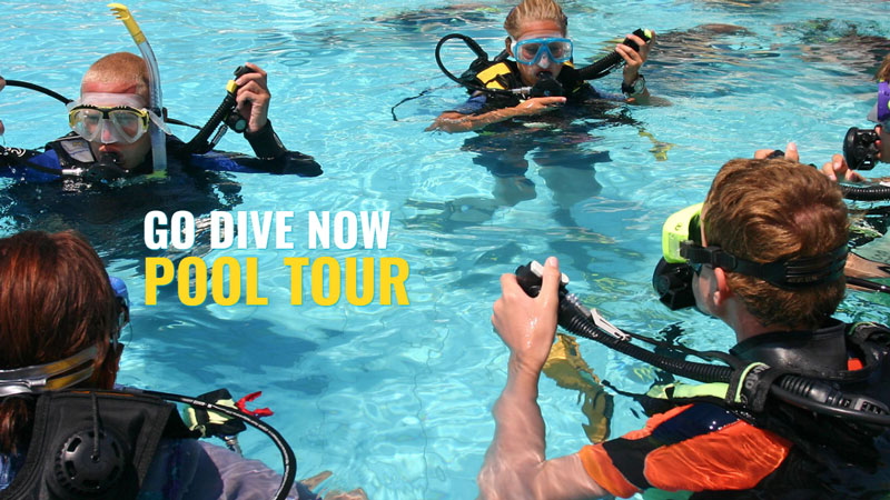 Catalina Cylinders Donates Cylinders to Support Go Dive Now Pool Tour